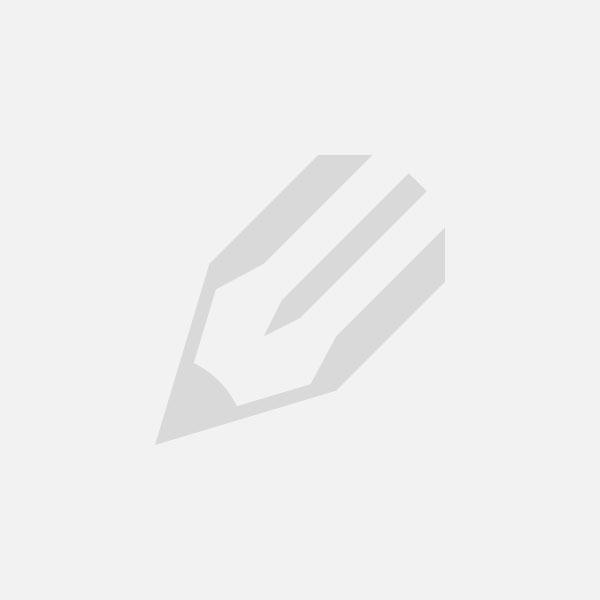 Die Bicolor Eheringe – das Symbol der Liebe