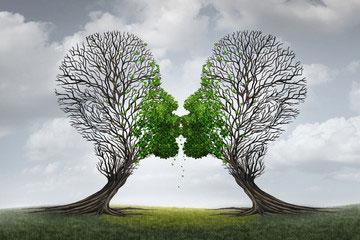 Zwischen Gelingen und Scheitern – heiraten oder nicht